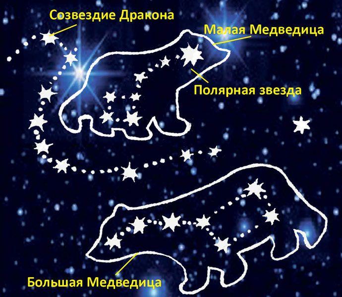 картинка большой и малой медведиц было введено