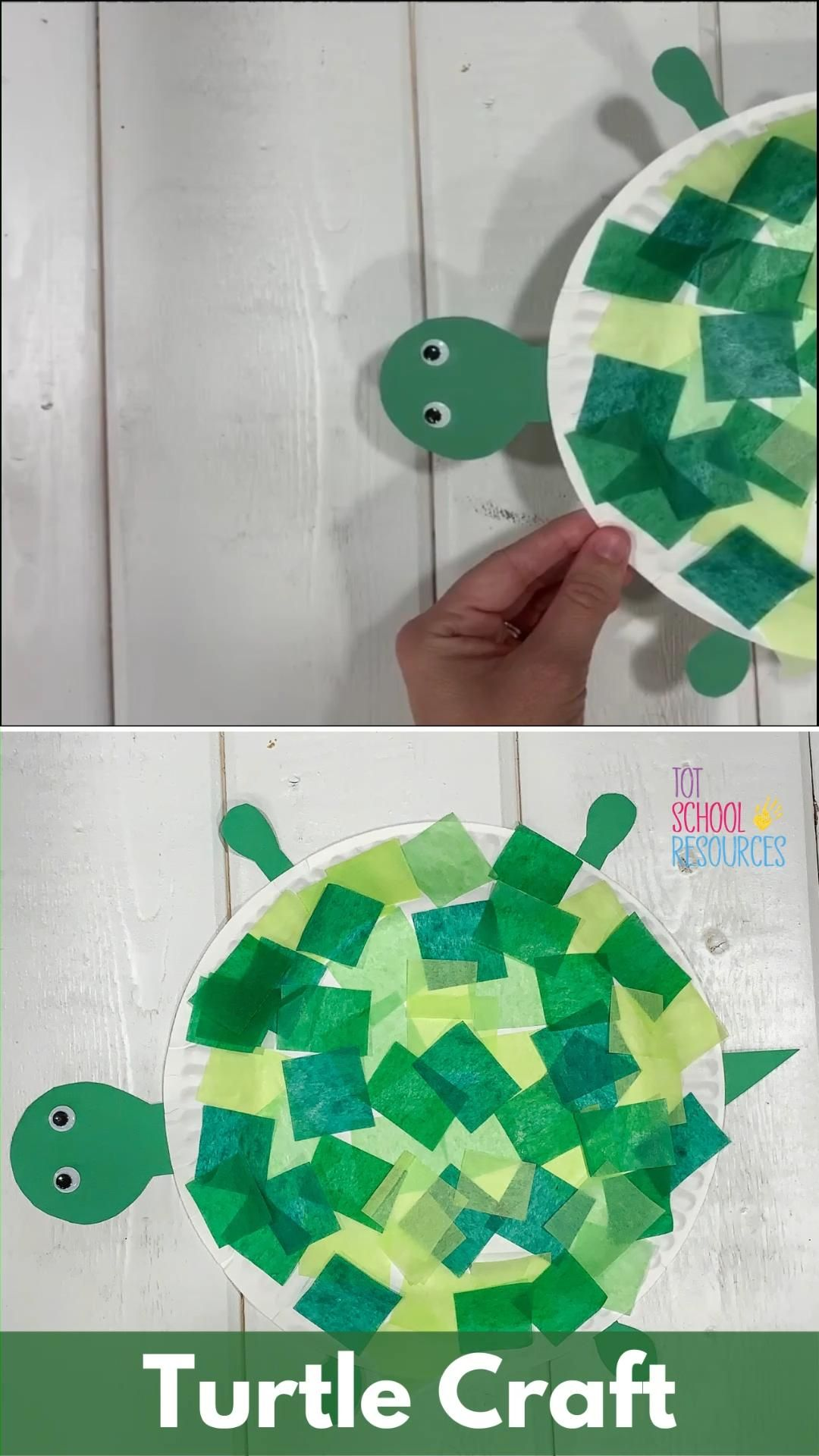 Photo of Paper plate turtle craft