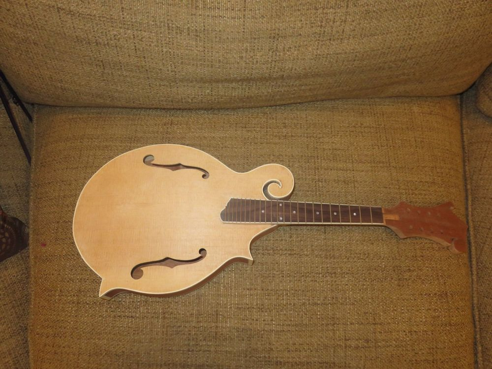 Customize And Make Your Own Mandolin New Diy Builder Kit Cozart