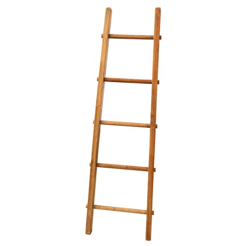 Symple Stuff 606 Ft Wood Straight Ladder Hazelwood Home Small Closet Space Clothes Stand