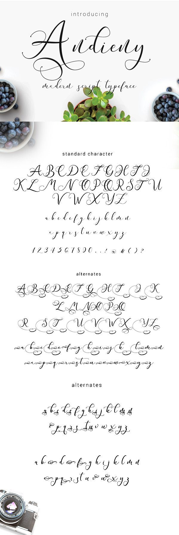 4582 Free Handwritten, Cursive Fonts 2019 | etsy sellers let's get