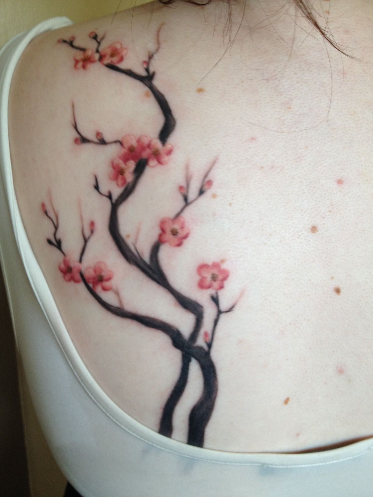 ed766272143c2 This is my cherry blossom branch tattoo that I got today. Over the summer I  became very ill out of nowhere and have mostly been unable to leave the  house ...