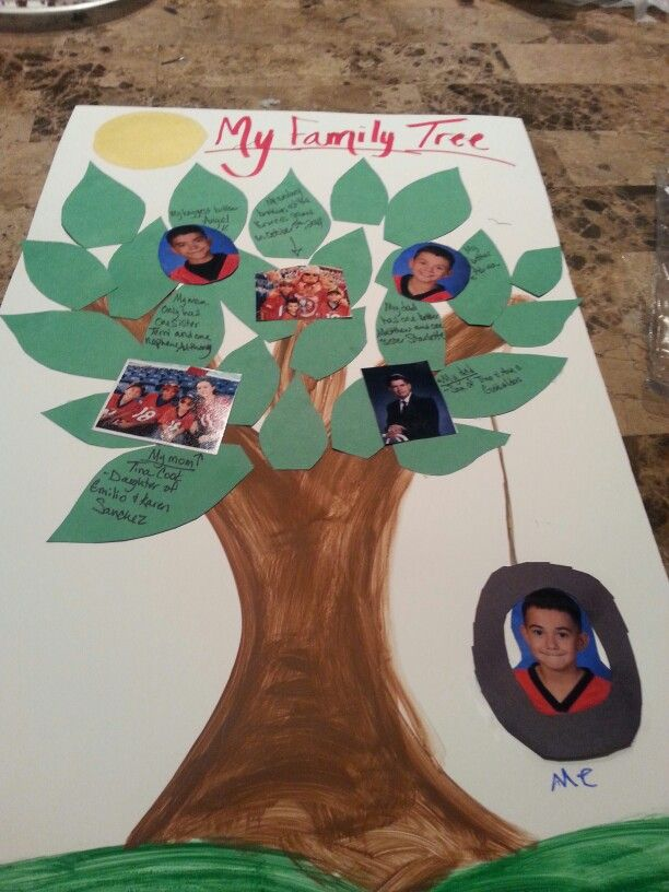 Family Tree Project This Project Wil Help The Students See Their