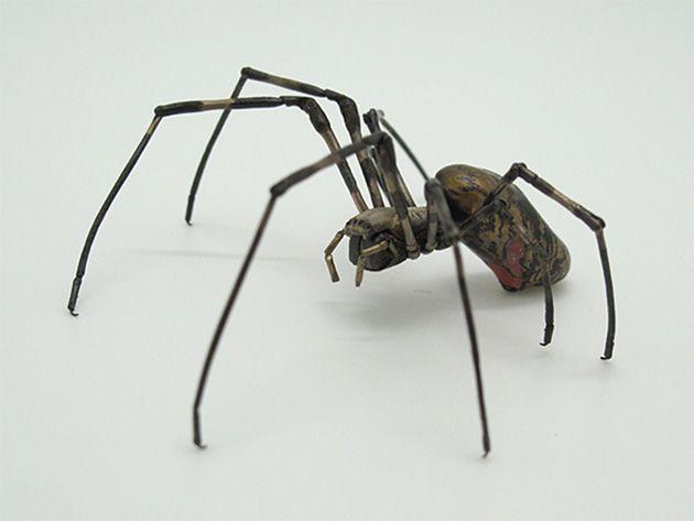 自在女郎蜘蛛 満田春穂 Happy Plus Art ハピプラアート 蜘蛛