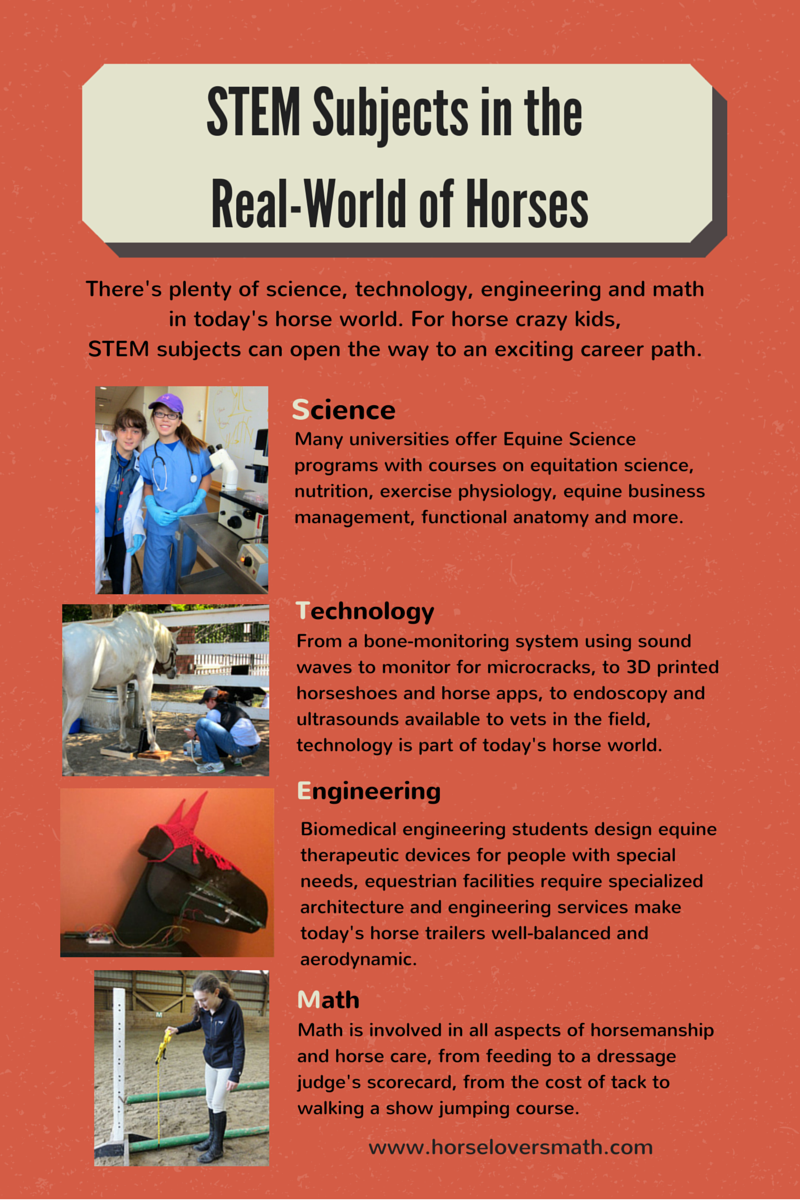 A Passion For Horses Can Be Turned Into A Wonderful Career If Kids Know The Way Teaching Life Skills Science Programs Exercise Physiology