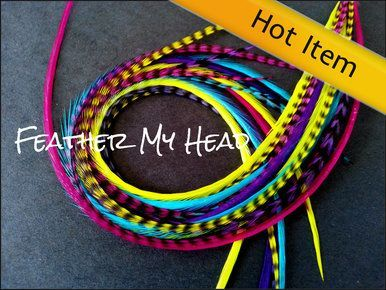 Feather hair extensions do it yourself diy kit 16 pc thin feather hair extensions do it yourself diy kit 16 pc thin feathers solutioingenieria Image collections
