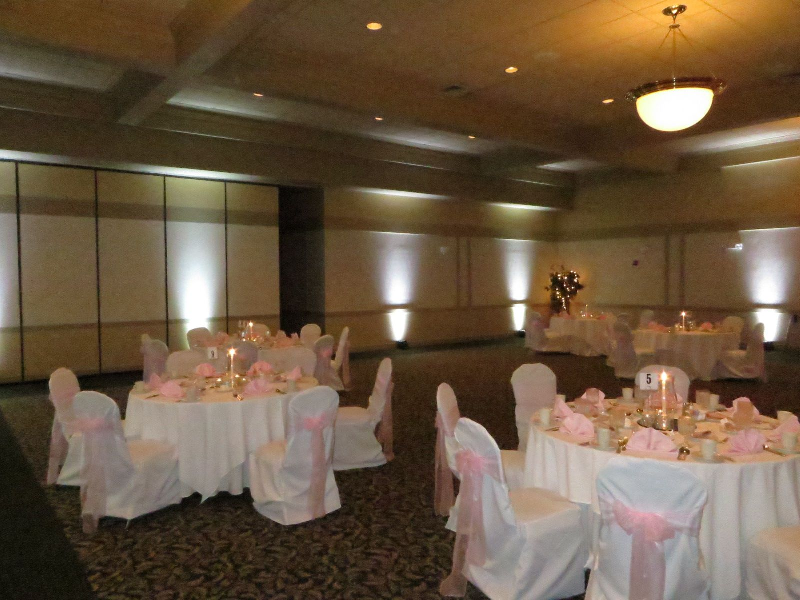 Ashley and Mike chose uplighting in white for their ceremony and ...