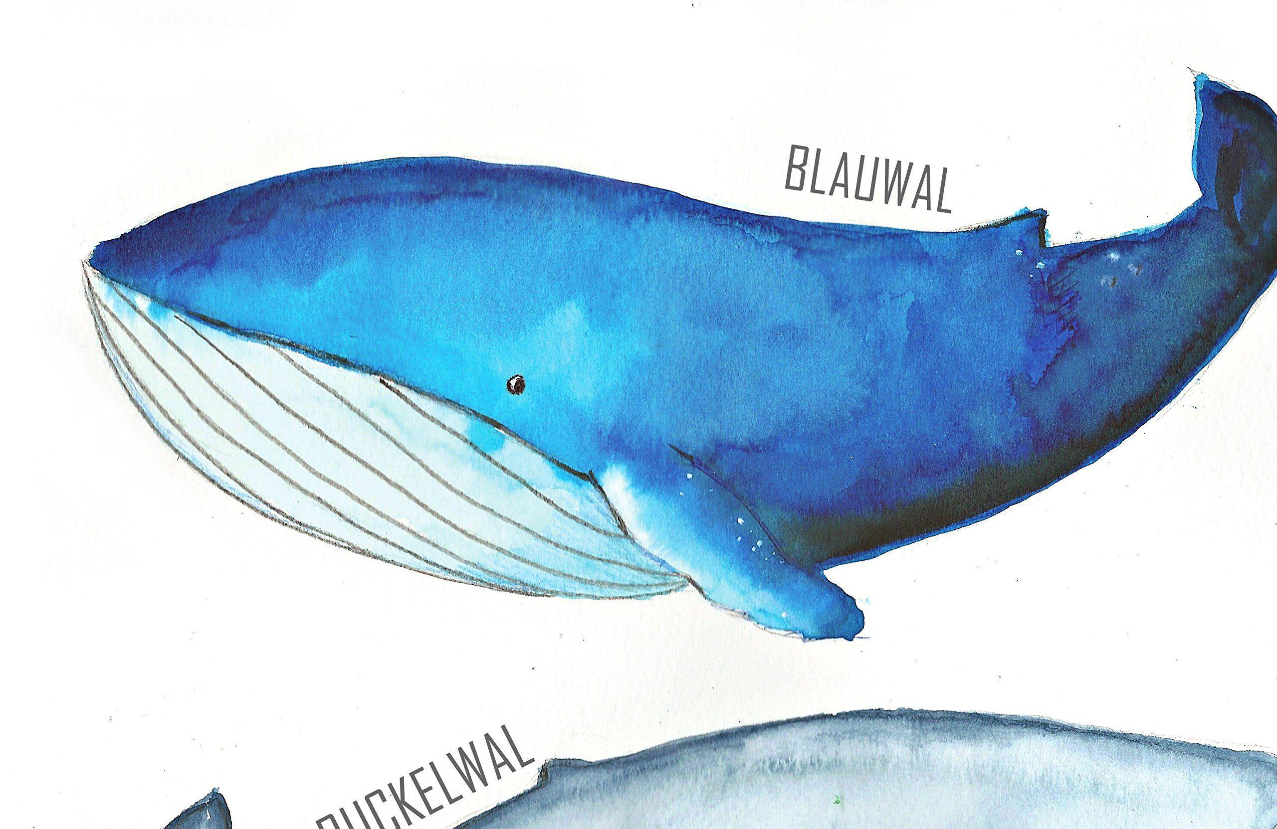Tinytami Kunstdruck In Aquarell Walposter F R Kinderzimmer