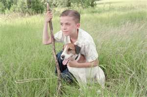 My Dog Skip Dog Movies Jack Russell Great Movies
