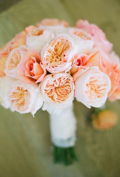 Coral Garden Rose amusing 30+ coral garden rose bouquet decorating design of 20 best