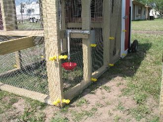 Genial And You Can Add An Optional Electric Fence To Keep Predators Out Of That  Cadillac Chicken
