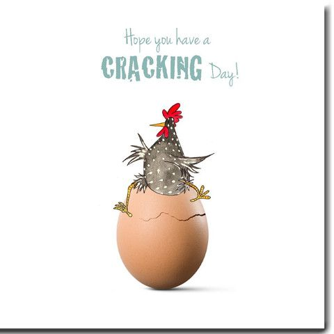 Cracking day birthday cards we love these funky chicken birthday cracking day birthday cards we love these funky chicken birthday cards by the skinny card bookmarktalkfo Choice Image