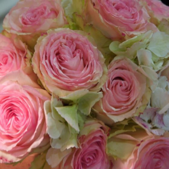 Rose Bouquet. | Lovin' It | Pinterest | Rose Bouquet And Flowers