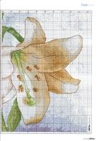 "Gallery.ru / tymannost - Альбом ""Cross Stitch Collection 223 июнь 2013"""