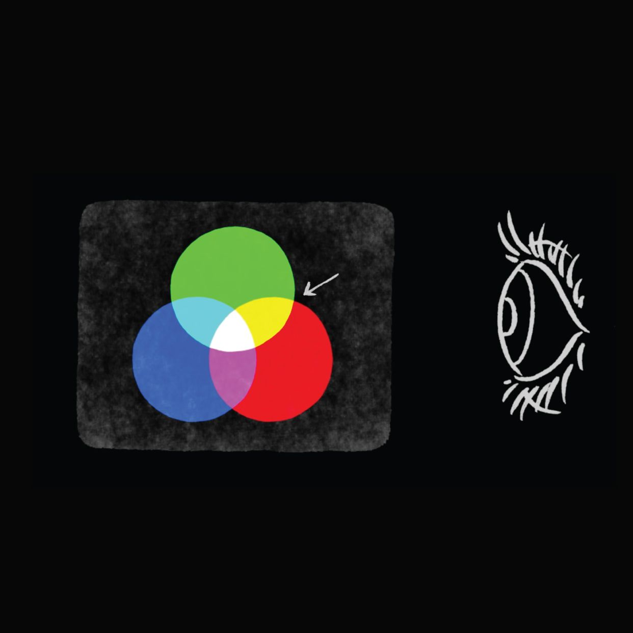 Have you ever wondered how we see color watch this video
