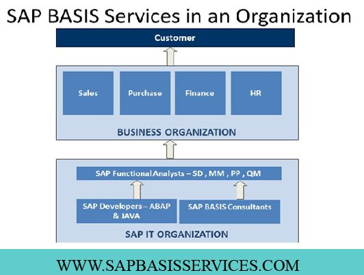 SAP BASIS administration services focus on administrating and