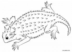 Horned Lizard Coloring Pages | Sonoran Desert | Pinterest | Horned ...
