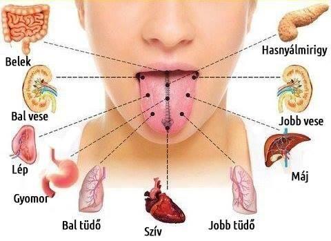 májbetegség Ayurveda szempontjából 9 látás távollátás