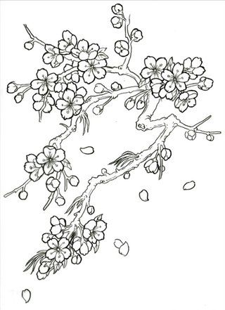 photo CherryBlossom_Drawing_Vt.jpg | Embroidery - Patterns ...