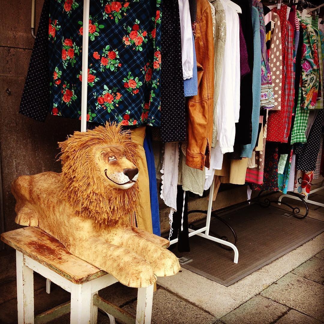 Ein bayerische Löwe bewacht den Secondhandenladen Frauenzimmerl in der Pettenkoferstrasse #secondhand #münchen #muenchen #löwe #lion #munich #shop #laden