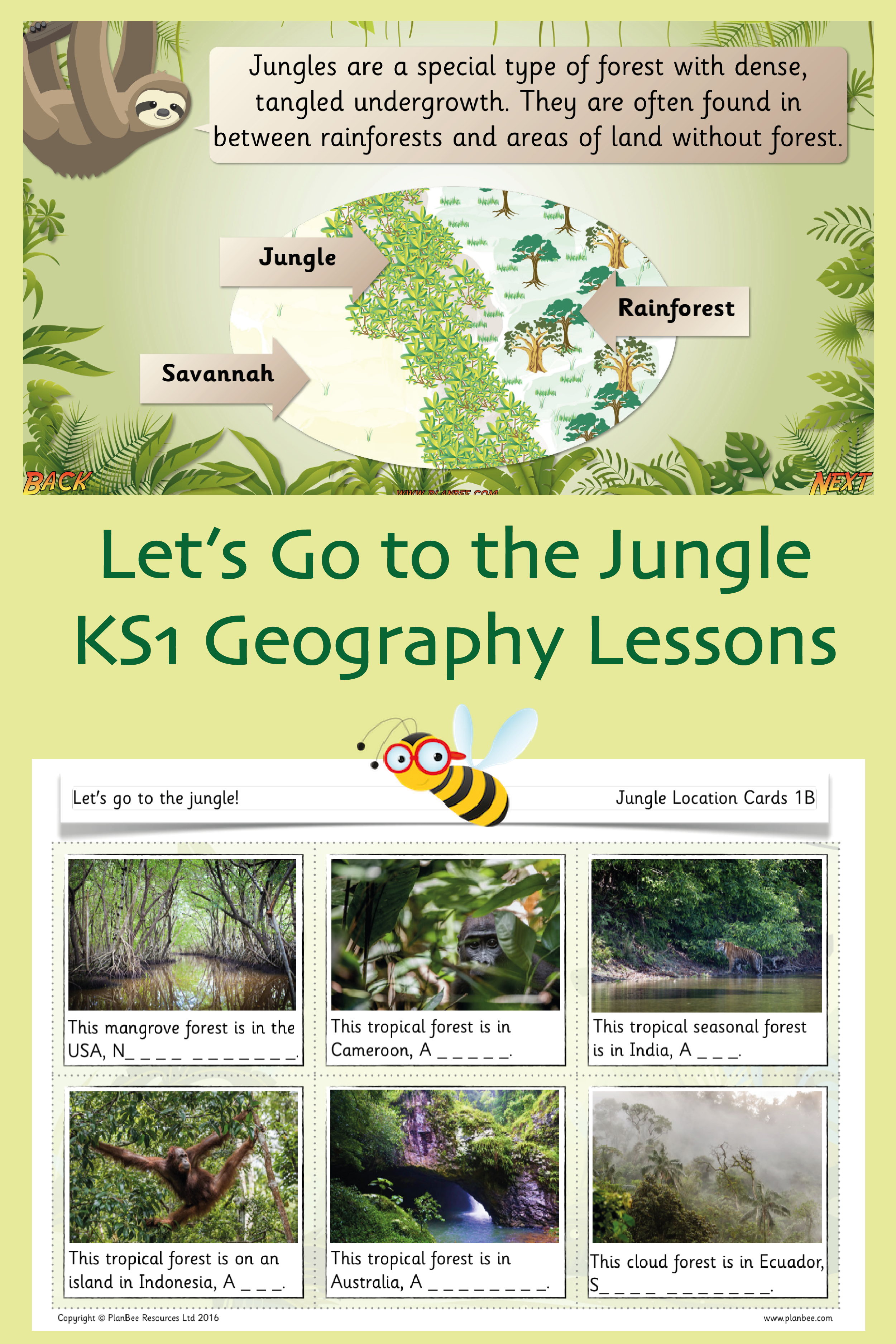 Let's go to the jungle Geography lessons, Geography for