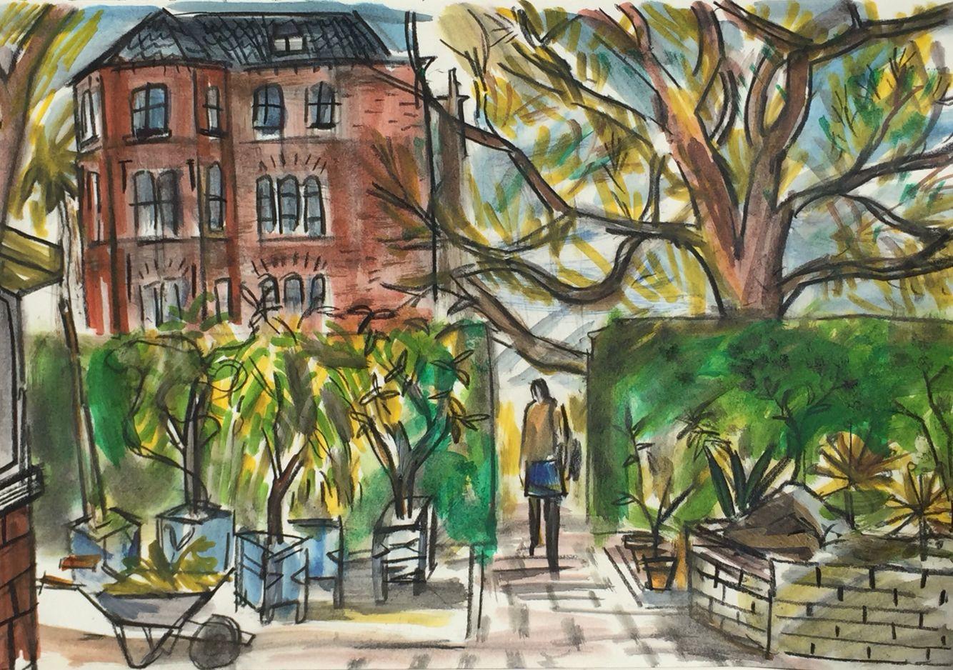 Leiden Botanical Gardens drawing