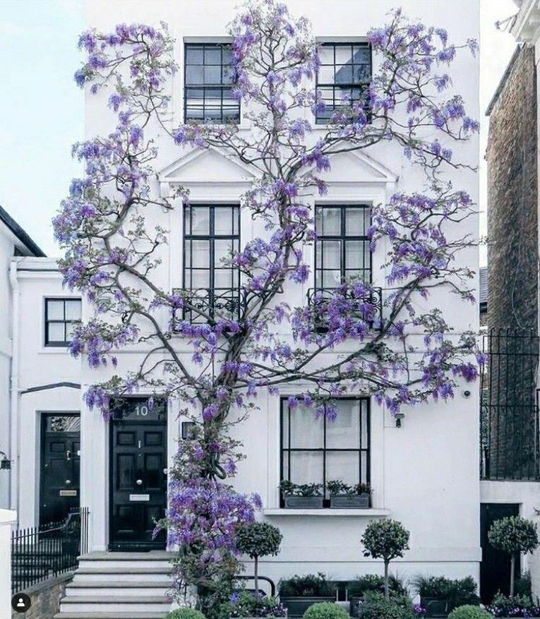 London Apartments Exterior: House Exterior, Exterior Design, House Design