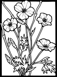 Bildergebnis für art nouveau poppy