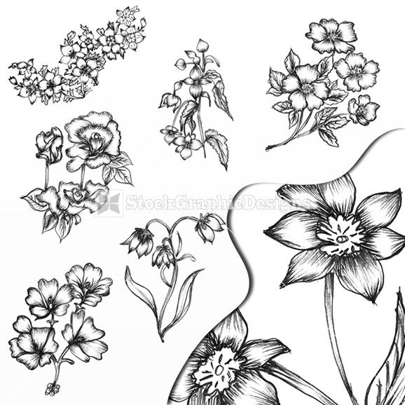 Sketchy Hand Drawn Decorative Flowers 110009 L