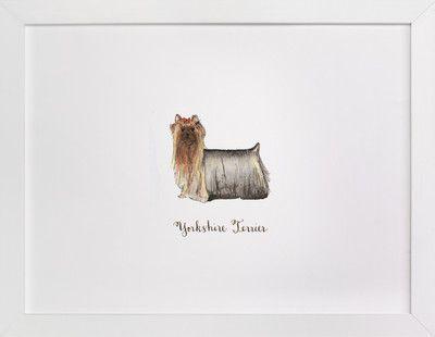 Atemberaubend Teacup Yorkie Malvorlagen Bilder - Framing Malvorlagen ...