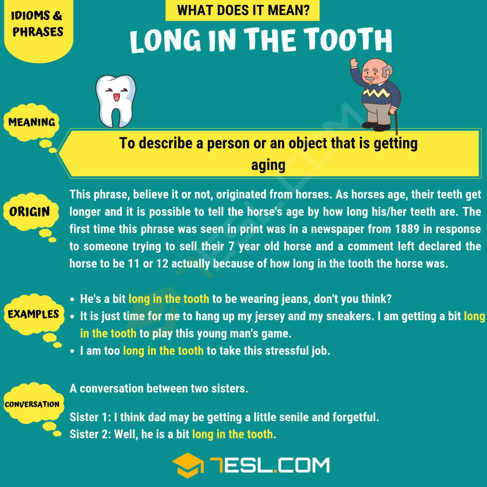 Long In The Tooth Long In The Tooth Meaning With Useful Examples 7 E S L Idioms And Phrases Idioms Other Ways To Say [ 1000 x 1000 Pixel ]
