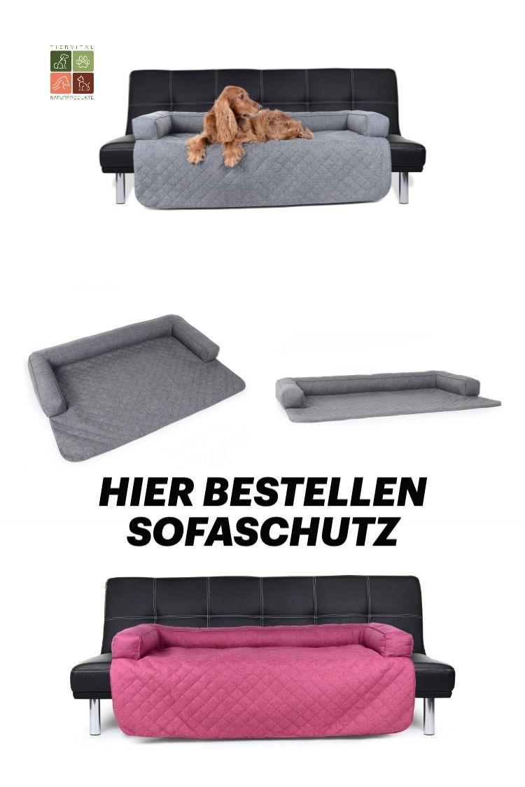 Pin Auf Hundewelt