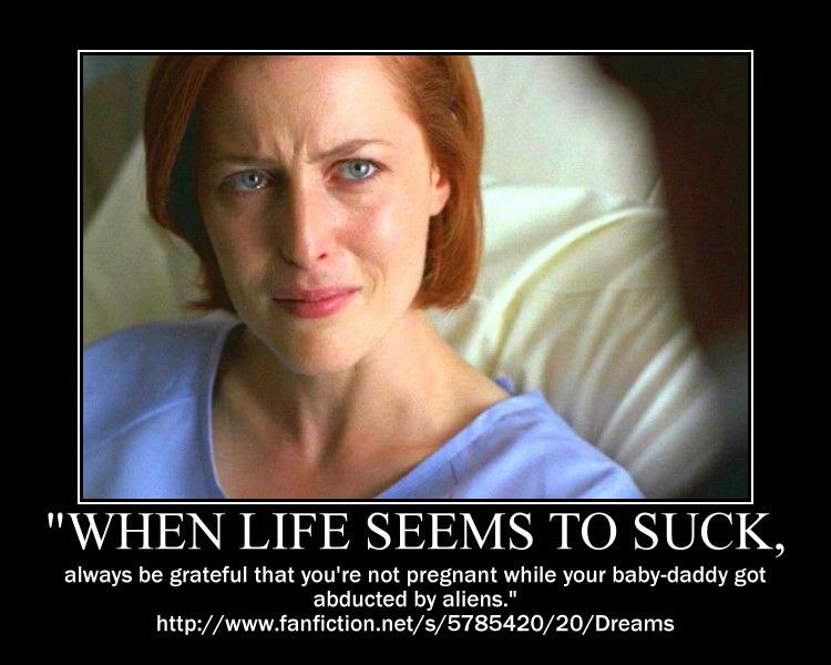 X Files Motivational Posters X Files Motivational Posters David And Gillian