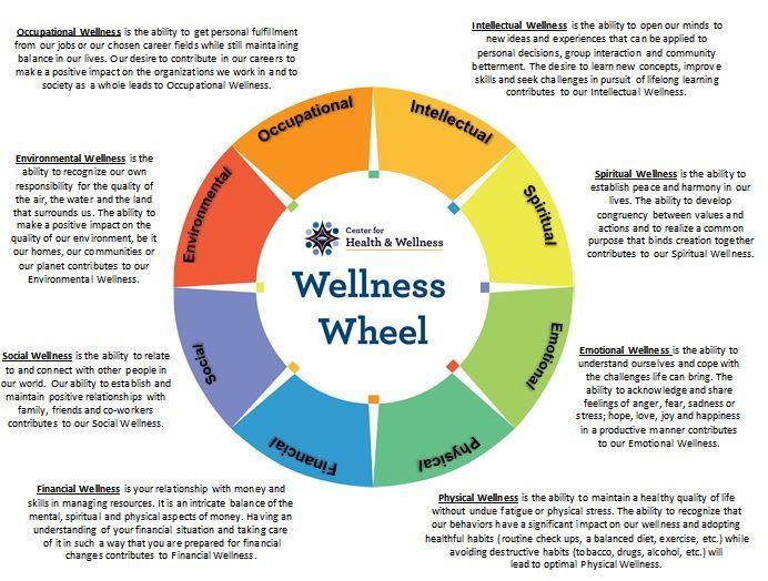 Image result for wellness wheel