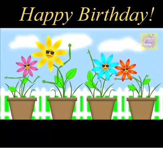 Send Birthday Flowers Singing Happy To Friends Family And Loved Ones On Their Special Day Free Online Funny Ecards
