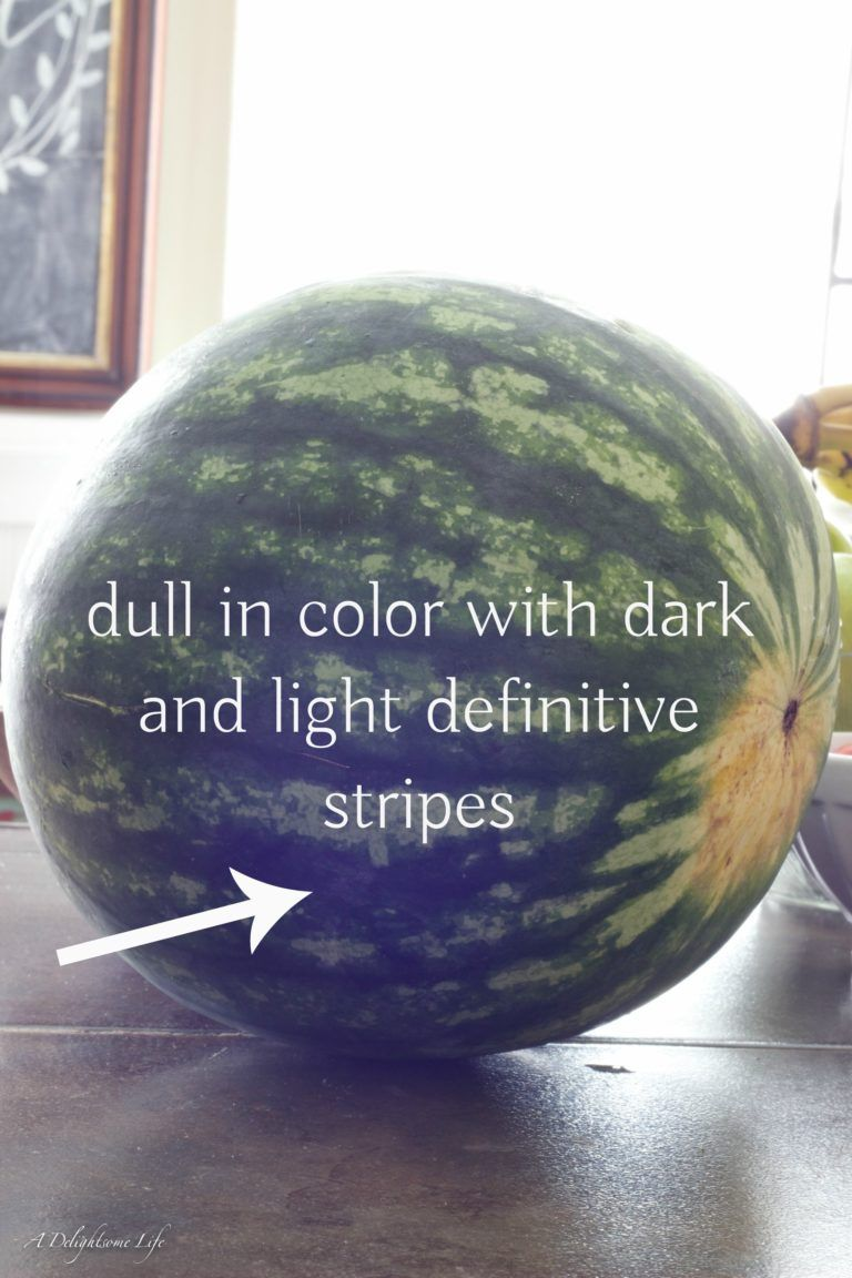 How to Pick a Ripe Watermelon that Tastes Like Summer is part of Fruit recipes - It's summer and you want to pick a sweet, juicy ripe watermelon  How do you know which one  My daughters showed me how to pick a ripe watermelon