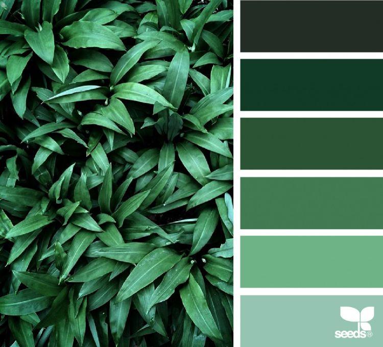 welche farbe passt zu gr n farbpalette nuancen inneneinrichtung pinterest farben welche. Black Bedroom Furniture Sets. Home Design Ideas