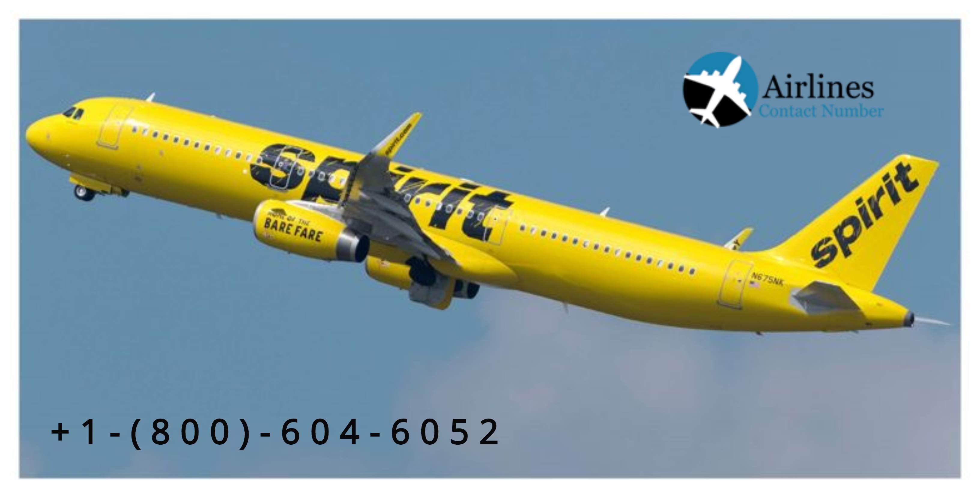 Spirit Airlines Contact Number +18556530296 Spirit