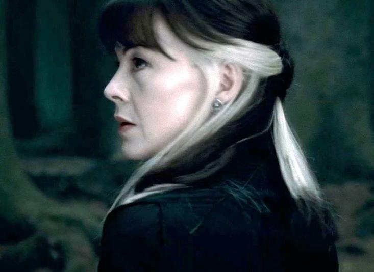 Narcissa Malfoy Black White Hair In 2020 Hair Inspo Color Hair Color Underneath Aesthetic Hair