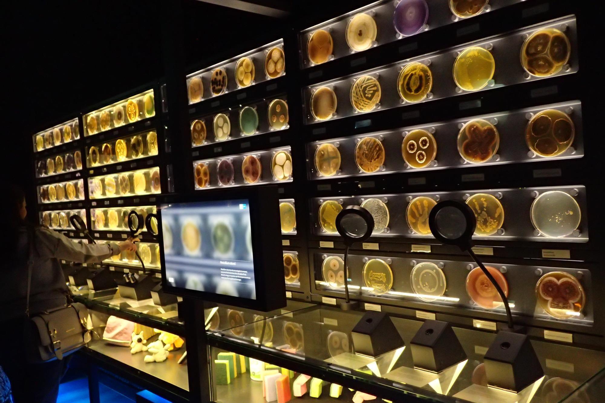 Micropia Microscopic Museum Amsterdam The Netherlands