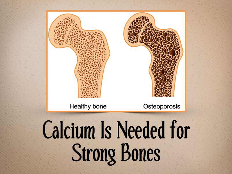 22+ Osteoporosis and jaw bone loss ideas in 2021