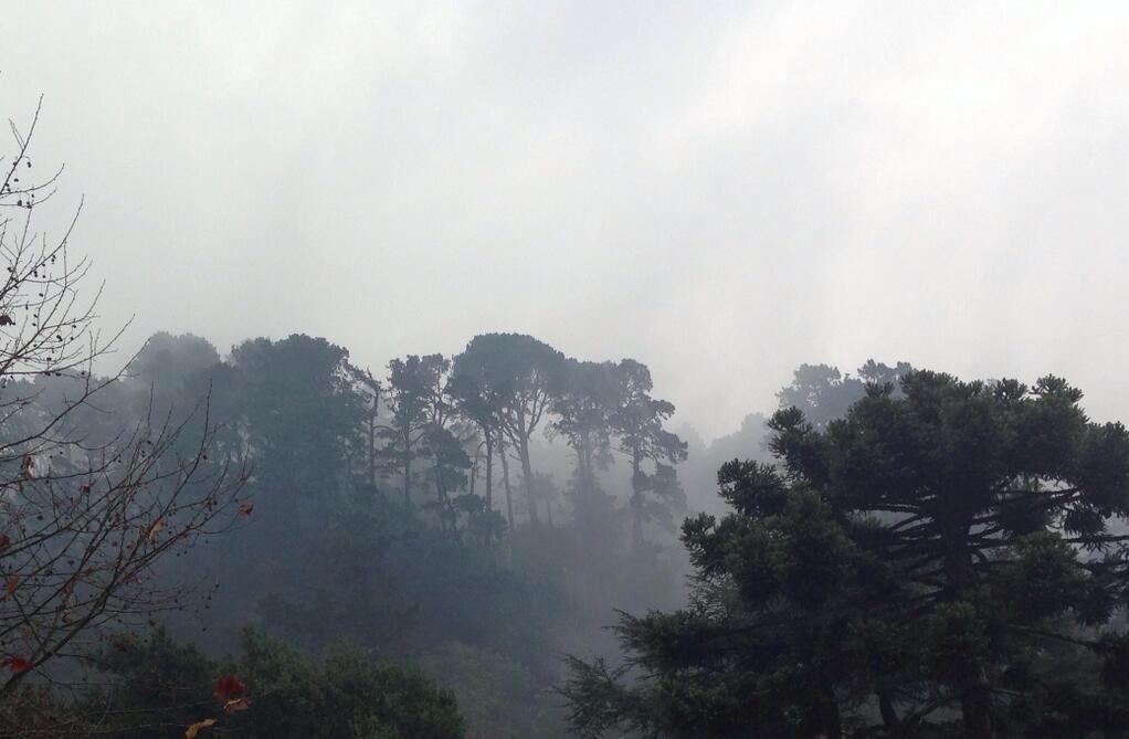 La vaguada costera que cubre el Cerro Caracol de Concepción