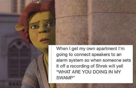 Tumblr Ifunny Shrek Shrek Memes Tumblr Funny