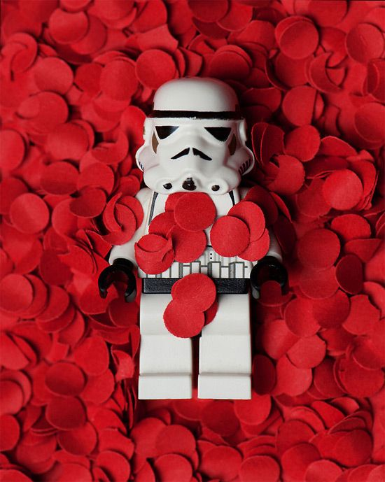 Stormtrooper American Beauty :)