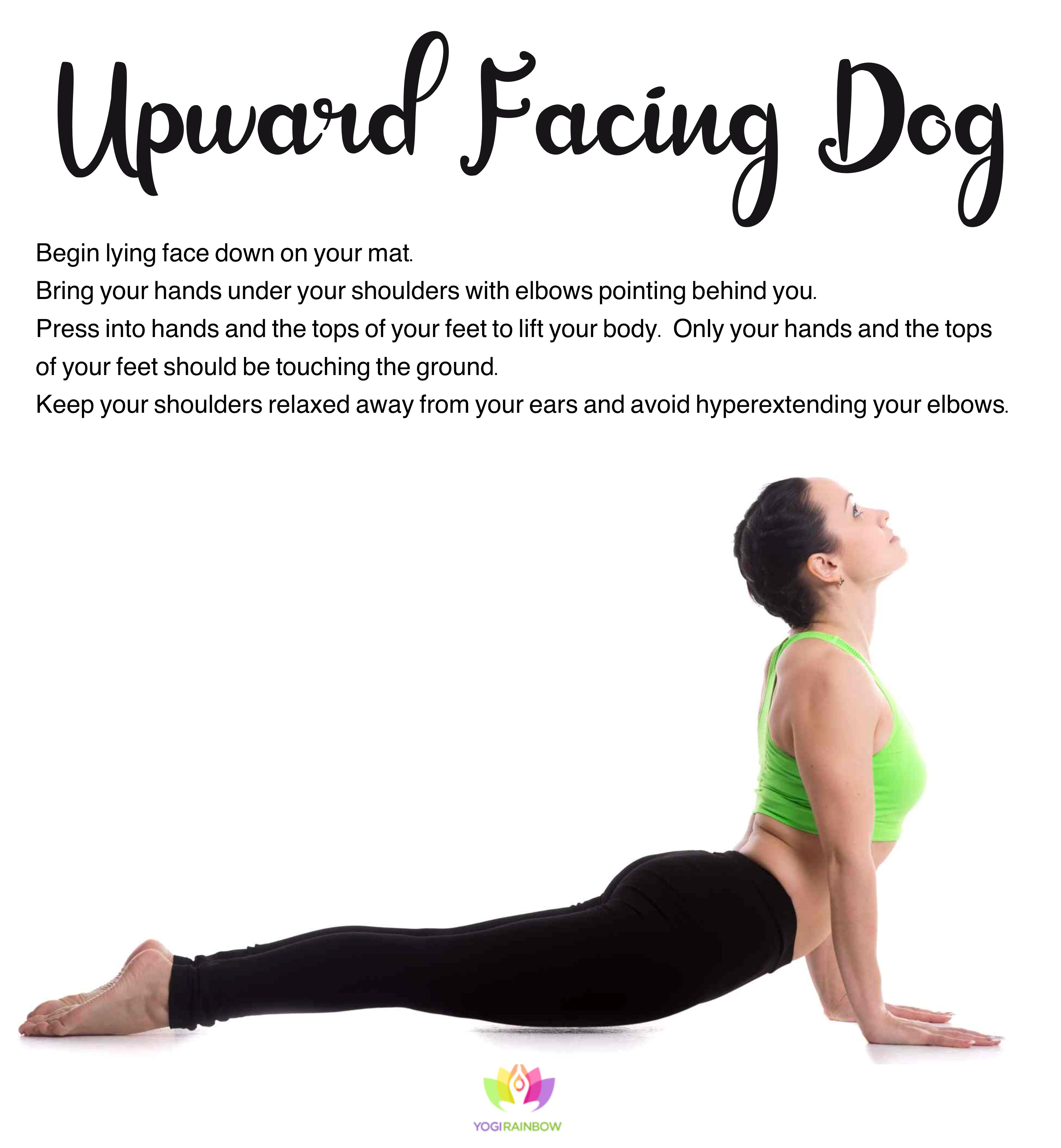 42++ Upward dog yoga position ideas