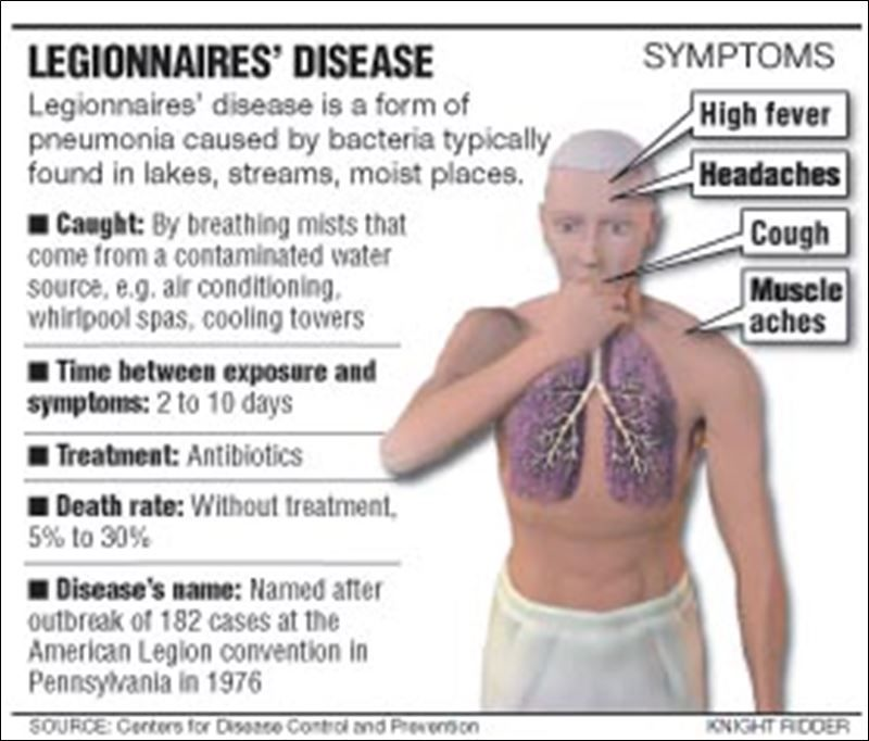 legionnaires' disease (legionella pneumophila infections, Human Body