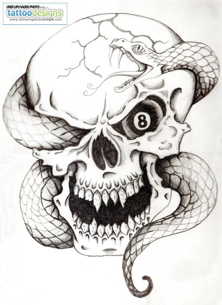 Pin by Lala riv on things Snake drawing, Snake tattoo