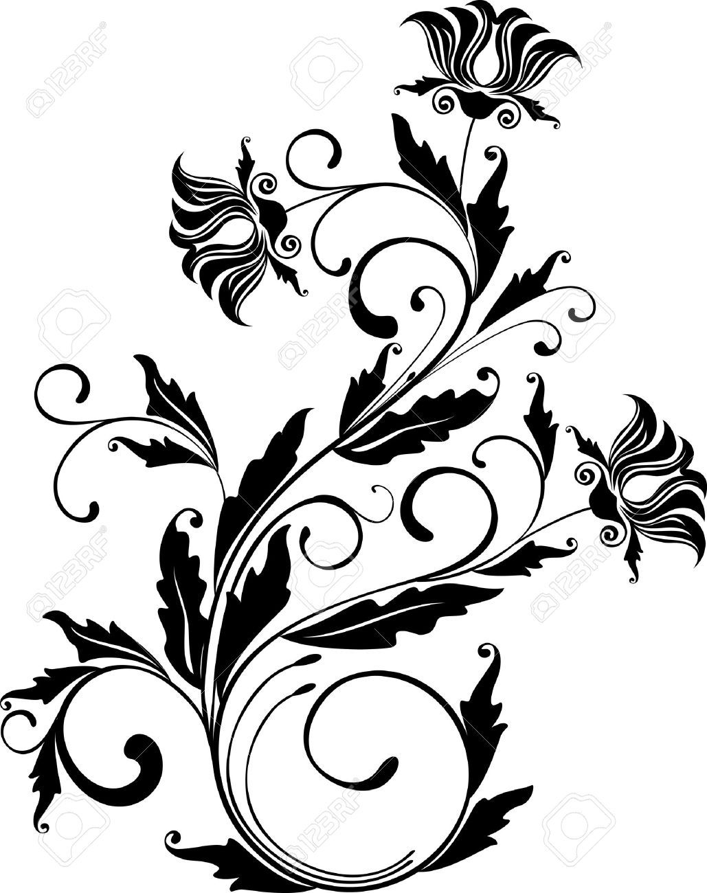 monochrome floral ornament vector illustration royalty free