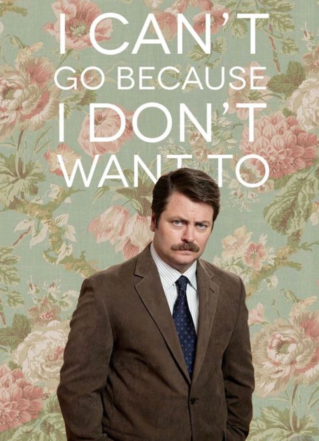 Pin by Beachgal on Silly sarcasm, love & positivity | Ron ...  Ron Swanson Quotes Salad