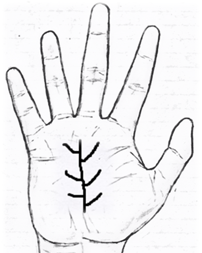 Lucky Signs Most Auspicious Signs And Symbols In Palmistry In 2020 Palmistry Lucky Sign Palm Reading